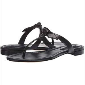 { Alexandre Birman } Clarita Naked T Strap Sandal